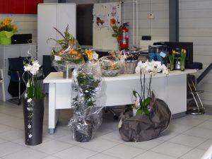 Frühlingsausstellung 2014 - Impressionen
